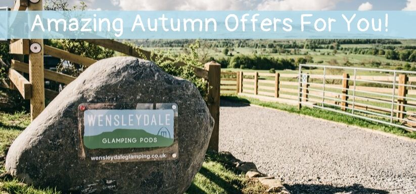 Amazing Autumn Offers!
